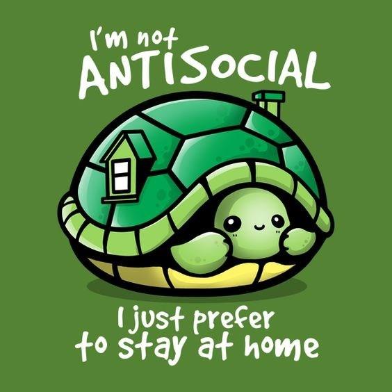 anti-social turtle meme