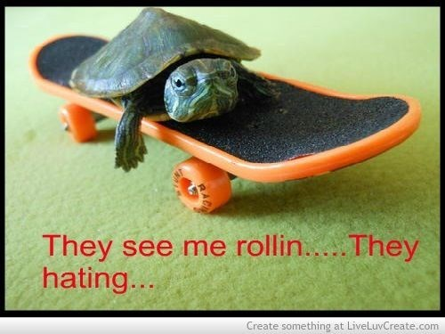 they see me rollin, they hating meme of a turtle on a skateboard