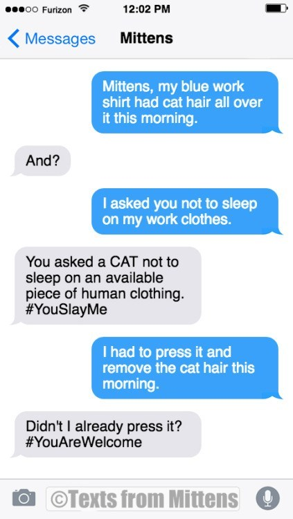 Text - 12:02 PM o0 Furizon Mittens Messages Mittens, my blue work shirt had cat hair all over it this morning. And? I asked you not to sleep on my work clothes. You asked a CAT not to sleep on an available piece of human clothing. #YouSlayMe I had to press it and remove the cat hair this morning. Didn't I already press it? #YouAreWelcome O OTexts from Mittens