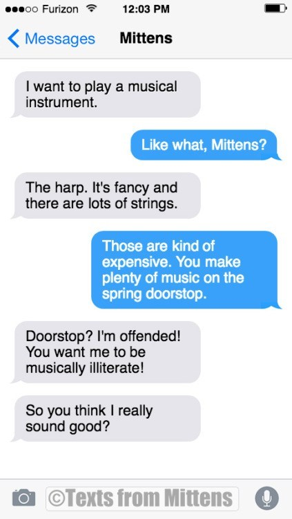 Text - oo Furizon 12:03 PM Mittens Messages I want to play a musical instrument. Like what, Mittens? The harp. It's fancy and there are lots of strings. Those are kind of expensive. You make plenty of music on the spring doorstop. Doorstop? I'm offended! You want me to be musically illiterate! So you think I really sound good? OTexts from Mittens