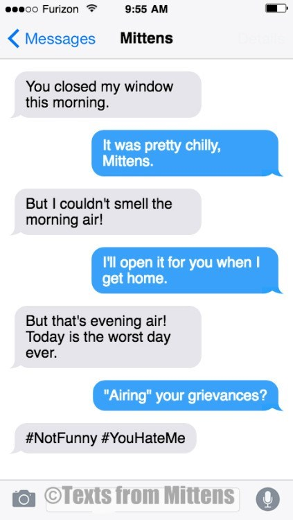 """Text - oo Furizon 9:55 AM Mittens Messages You closed my window this morning. It was pretty chilly, Mittens. But I couldn't smell the morning air! I'll open it for you when I get home. But that's evening air! Today is the worst day ever. """"Airing"""" your grievances? #NotFunny #You HateMe OTexts from Mittens"""