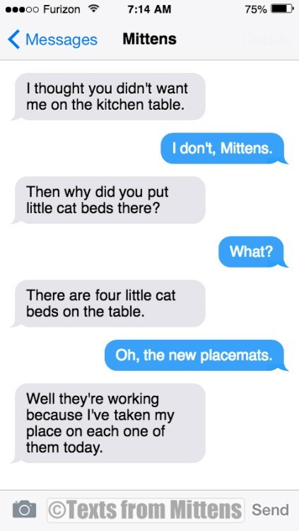 Text - o0 Furizon 7:14 AM 75% Mittens Messages I thought you didn't want me on the kitchen table. I don't, Mittens. Then why did you put little cat beds there? What? There are four little cat beds on the table. Oh, the new placemats Well they're working because I've taken my place on each one of them today. a Texts from Mittens Send