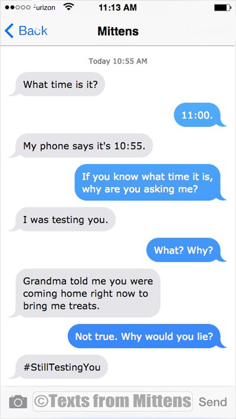 Text - 11:13 AM ooo Furizon Back Mittens Today 10:55 AM What time is it? 11:00 My phone says it's 10:55 If you know what time it is, why are you asking me? I was testing you. What? Why? Grandma told me you were coming home right now to bring me treats. Not true. Why would you lie? #StillTestingYou OTexts from Mittens Send