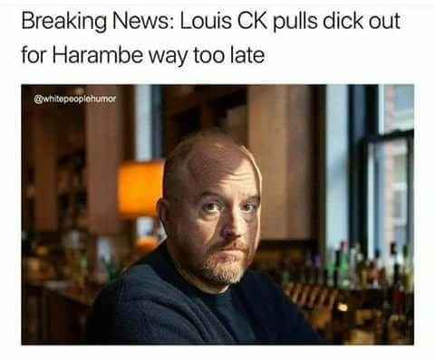 Funny meme about louis ck pulling out his dick for harambe too late.