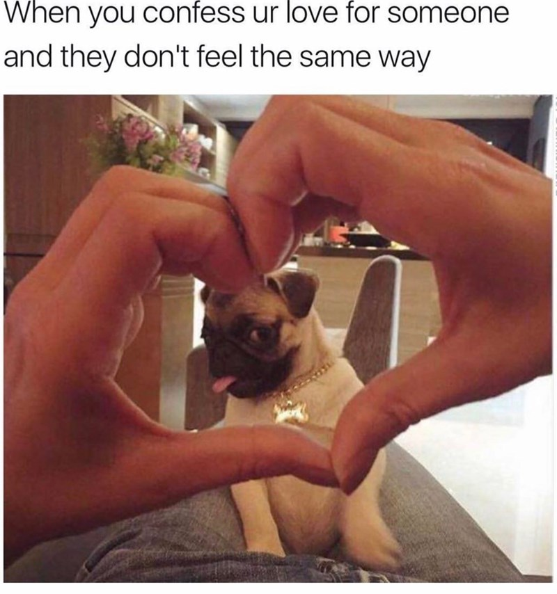 meme - Friendship - When you confess ur love for someone and they don't feel the same way