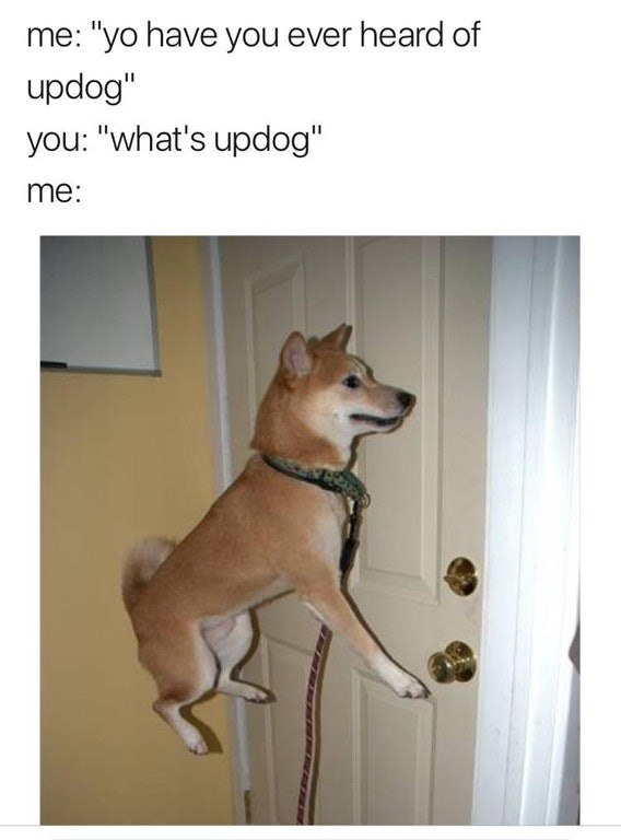 Whats Up Dog Meme
