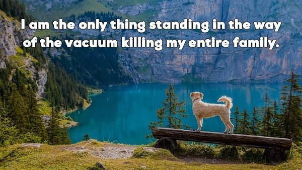Natural landscape - I am the only thing standing in the way of the vacuum killing my entire family.