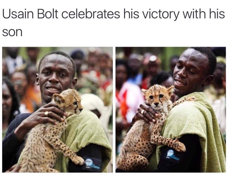 Funny meme suggesting Usain Bolt gave birth to a cheetah, they are bth very fast.