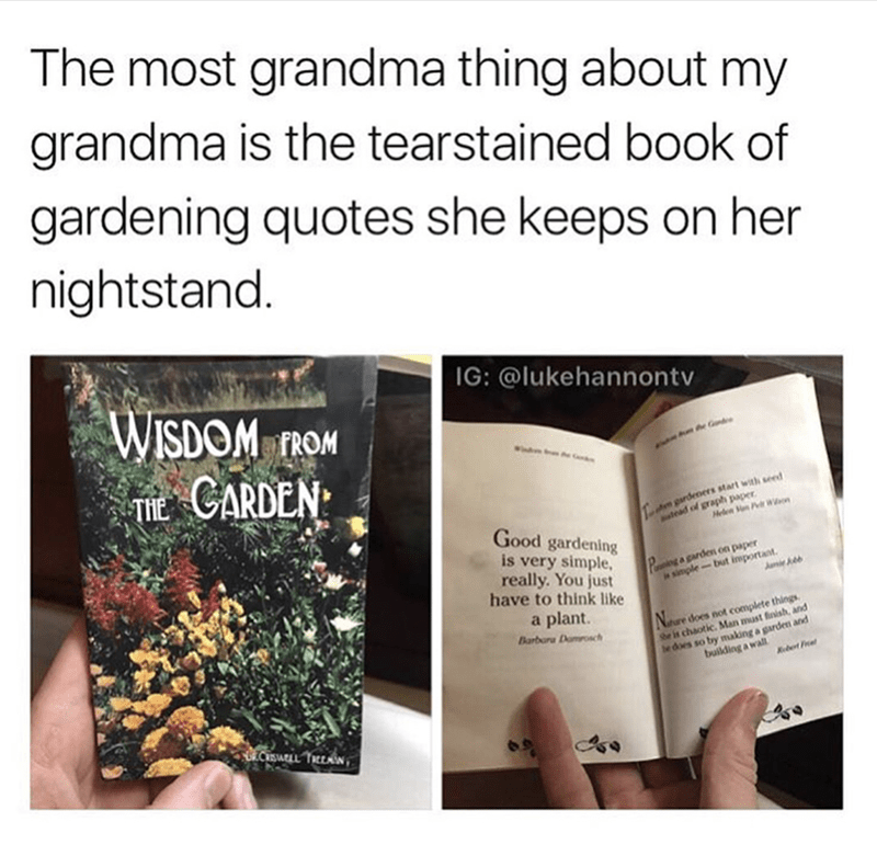 meme - Text - The most grandma thing about my grandma is the tearstained book of gardening quotes she keeps on her nightstand. IG: @lukehannontv WISDOM T CARDEN FROM Gd n gardeners start with seed tead of graph paper Good gardening is very simple really. You just have to think like Helen n PWon inga garden on paper ja simple-but important, a plant NDre does not complete things. Man must finish, and Barbara Damosch he does so by making a garden and building a wall he is chao Ebet Fe CSATLL TcEAN