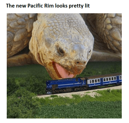 Funny meme about tortoise and pacific rim.