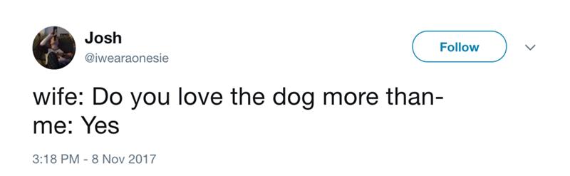 Text - Josh Follow @iwearaonesie wife: Do you love the dog more than- me: Yes 3:18 PM 8 Nov 2017