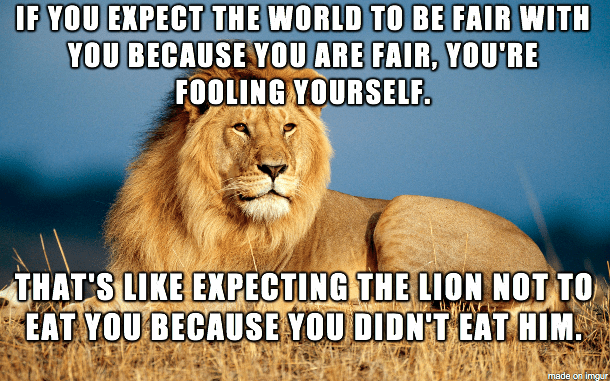 lion meme about expecting fairness in the world