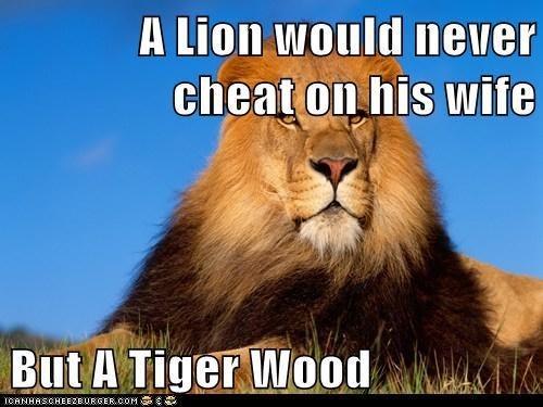 lion pun