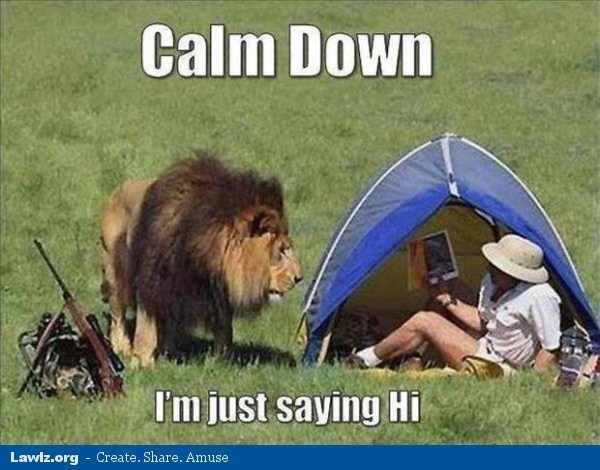 lion meme about visiting someone in a tent