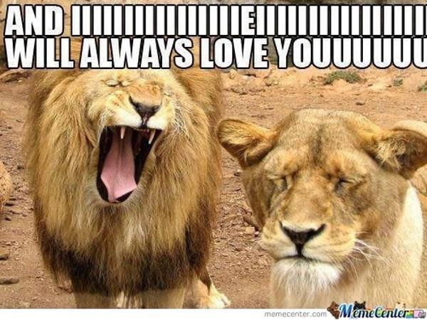 lion meme about badly singing whitney houston