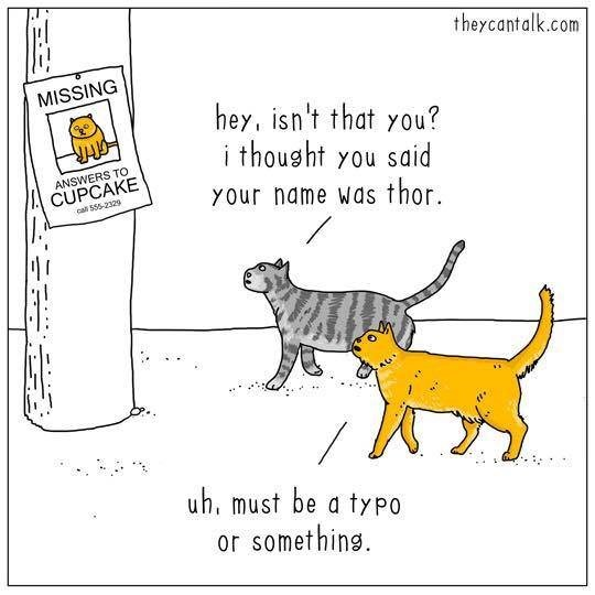 Cartoon - theycantalk.com MISSING hey, isn't that you? ithousht you said ANSWERS TO CUPCAKE call 555-23294 YOur name Was thor. uh, must be a typo or something