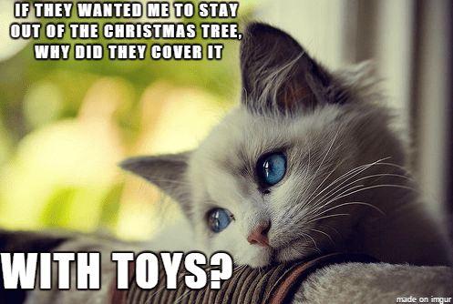 Cat - IF THEY WANTED ME TO STAY OUT OF THE CHRISTMAS TREE, WHY DID THEY COVER IT WITH TOYS? made on imgur