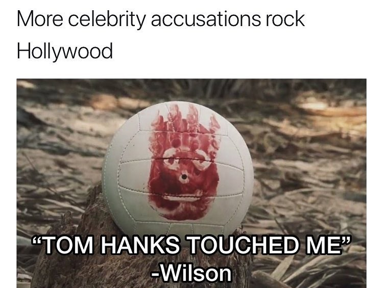 Funny meme about wilson anad tom hanks.