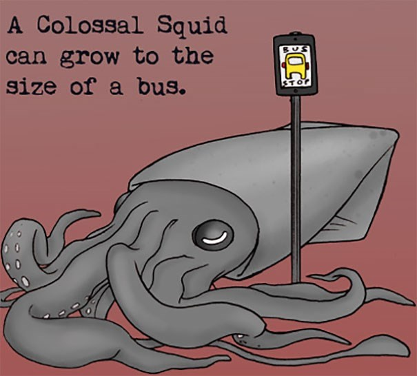 giant pacific octopus - A Colossal Squid can grow to the size of a bus.