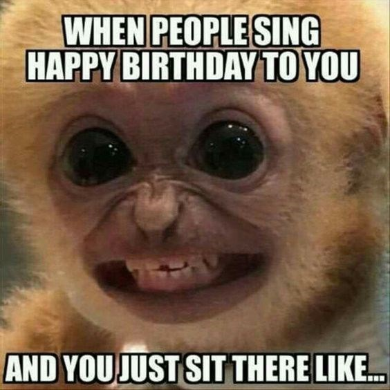 """monkey meme about being sung """"happy birthday"""" to with pic of monkey smiling awkwardly"""