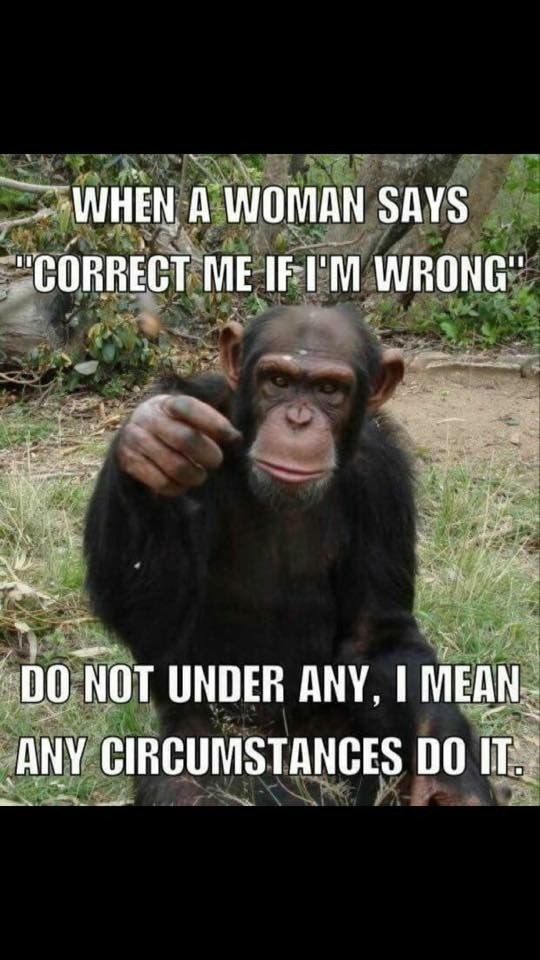 monkey meme about life advice on dealing with woman with pic of monkey pointing seriously at the camera