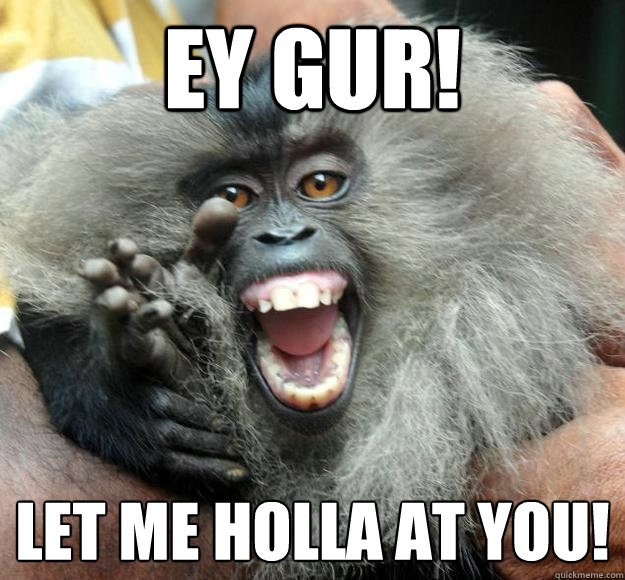 monkey meme with pic of monkey yelling at the camera
