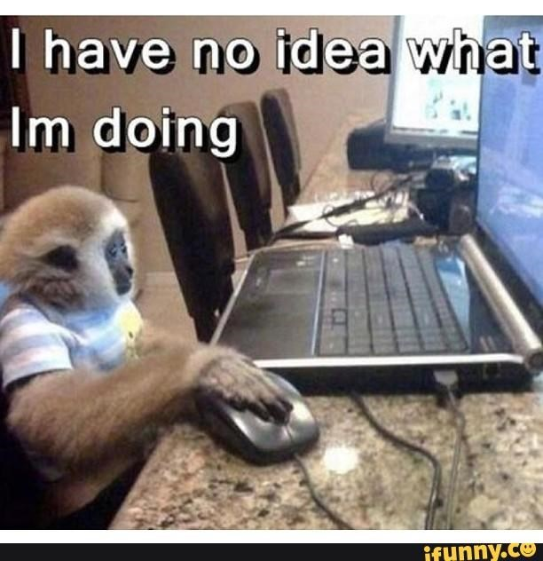 monkey meme about living in confusion with pic of monkey using a computer