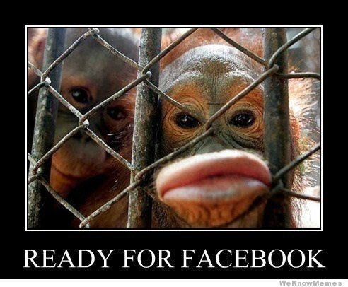 monkey meme about taking good selfies with pic of monkey pursing lips at the camera