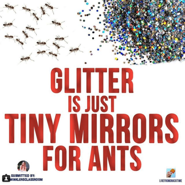Text - GLITTER IS JUST TINY MIRRORS FOR ANTS SUBMITTED BY: WINKLERSCLASSROOM LIVEFROMSNACKTIME