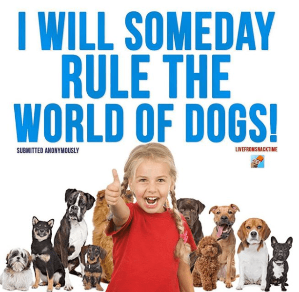 Dog breed - WILL SOMEDAY RULE THE WORLD OF DOGS! SUBMITTED ANONYMOUSLY LIVEFROMSNACKTIME