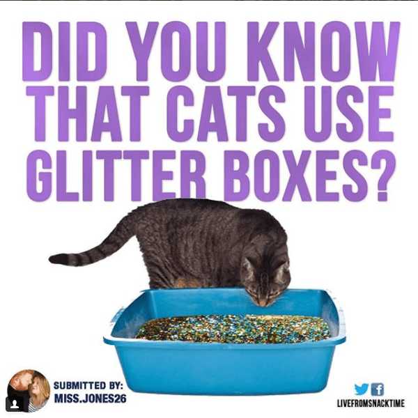 Pet food - DID YOU KNOW THAT CATS USE GLITTER BOXES? SUBMITTED BY: MISS.JONES26 yf LIVEFROMSNACKTIME