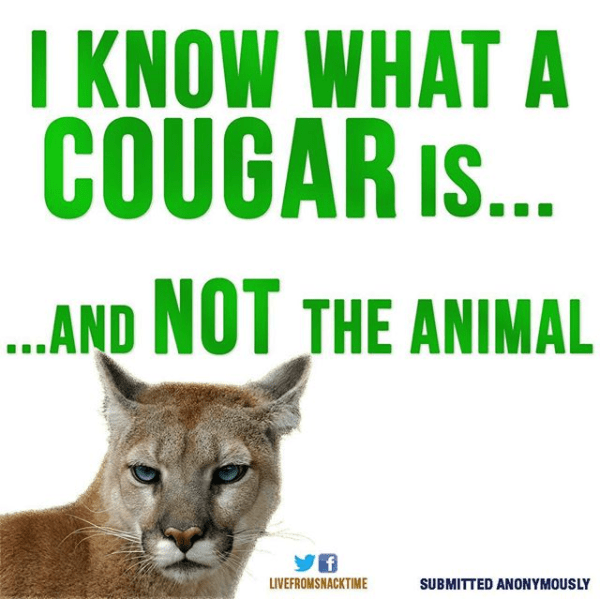 Wildlife - I KNOW WHAT A COUGAR I... ...AND NOT THE ANIMAL LIVEFROMSNACKTIME SUBMITTED ANONYMOUSLY