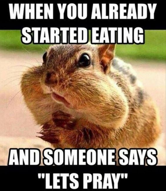 squirrel meme about starting to eat too early with pic of squirrel with full cheeks