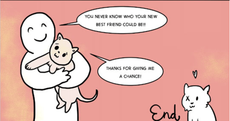adopting cats - Cartoon - YOU NEVER KNOW WHO YOUR NEW BEST FRIEND COULD BE!! THANKS FOR GIVING ME A CHANCE! End, T