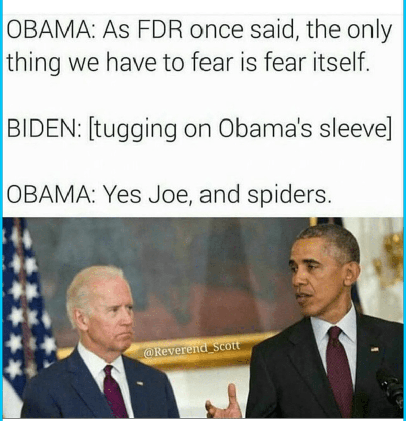 funny memes - Text - OBAMA: As FDR once said, the only thing we have to fear is fear itself. BIDEN: [tugging on Obama's sleevel OBAMA: Yes Joe, and spiders. @Reverend Scott