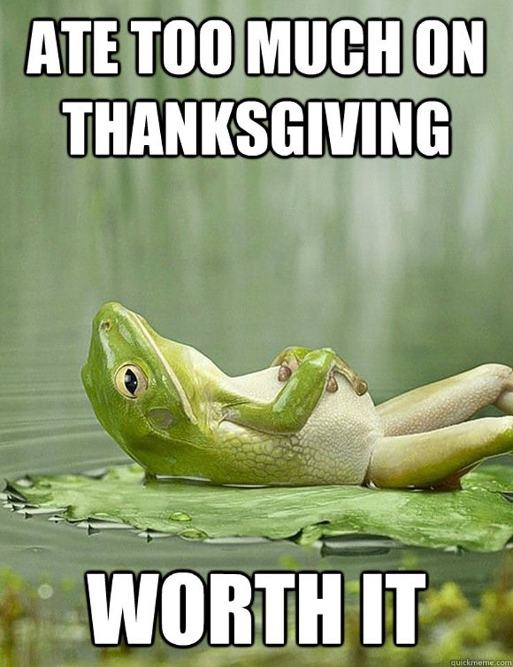 Frog - ATE TOO MUCH ON THANKSGIVING WORTH IT quickmeme.com