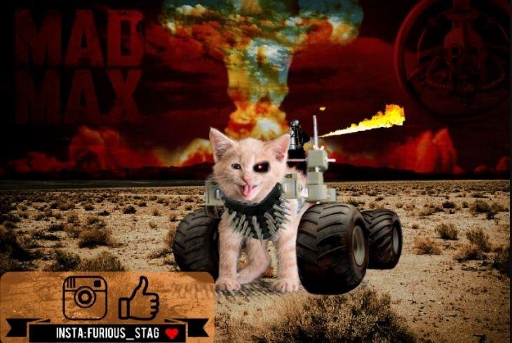 Games - MAB AX INSTA:FURIOUS STAG