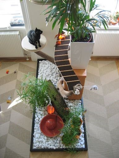 18 Amazing Cat Room Designs For Your Inspiration I Can Has Cheezburger