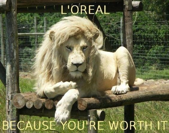 funny lions - - Vertebrate - L'OREAL BECAUSE YOU'RE WORTH IT