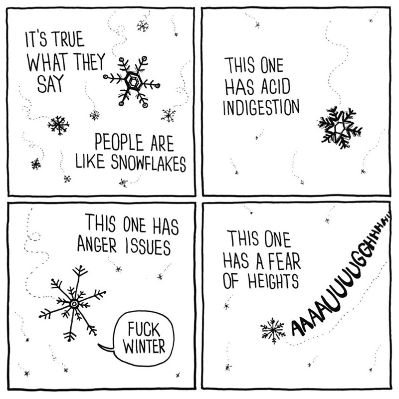 Text - IT'S TRUE WHAT THEY SAY THIS ONE HAS ACID INDIGESTION PEOPLE ARE LIKE SNOWFLAKES THIS ONE HAS ANGER ISSUES THIS ONE HAS A FEAR OF HEIGHTS FUCK WINTER