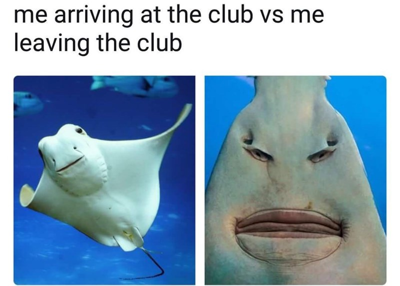 Nose - me arriving at the club vs me leaving the club
