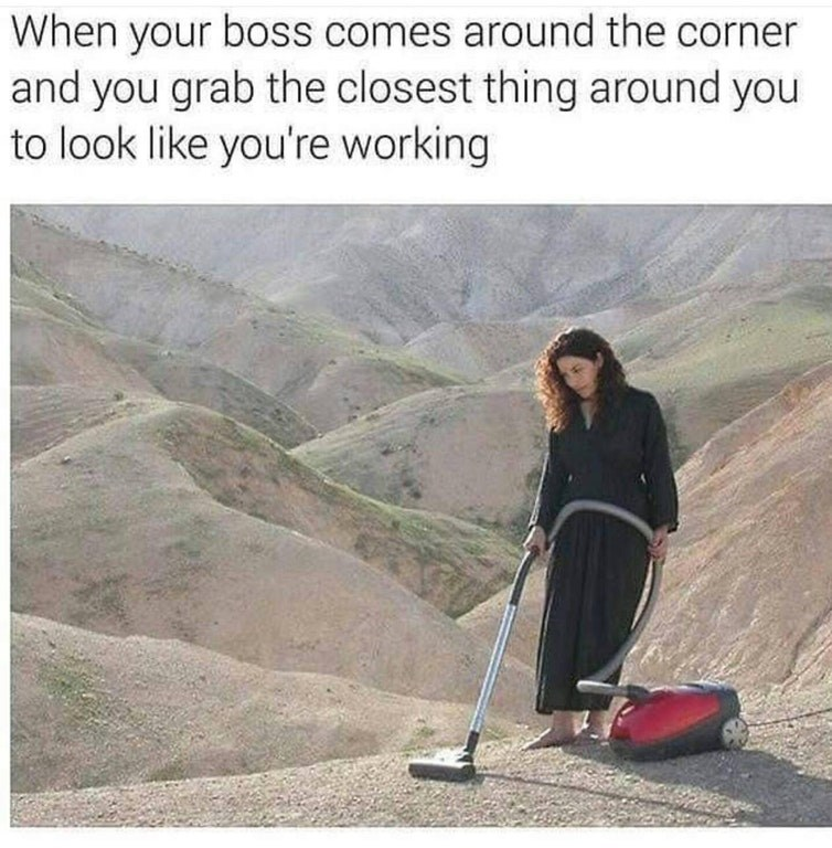 Funny meme about work with woman vacuuming outside.