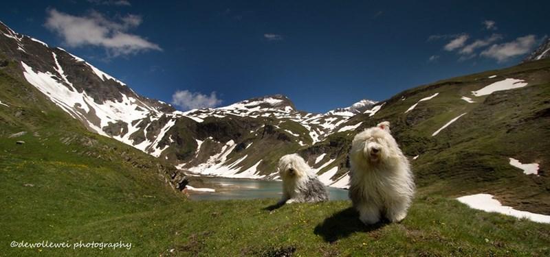Mountain range - dewollewei photography