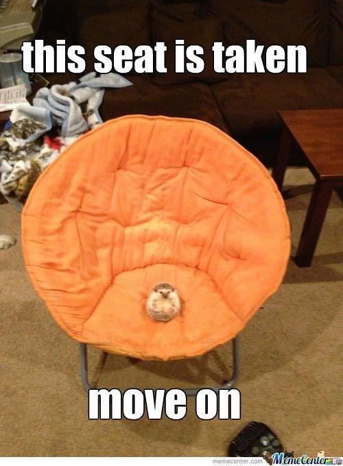 Orange - this seat is taken move on MemeCentere memecenter.com