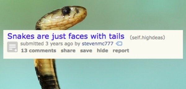 Snake - Snakes are just faces with tails (self.highdeas) submitted 3 years ago by stevenmc777 13 comments share save hide report
