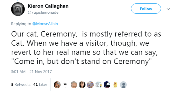 """Text - Kieron Callaghan Follow @7upislemonade Replying to @MooseAllain Our cat, Ceremony, is mostly referred to as Cat. When we have a visitor, though, we revert to her real name so that we can say, """"Come in, but don't stand on Ceremony"""" 3:01 AM - 21 Nov 2017 5 Retweets 41 Likes"""