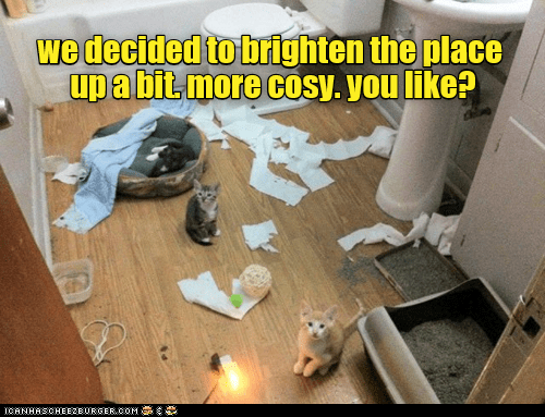 Floor - wedecided to brighten the place upabit more cosy. you like? ICANHASCHEE2E0RGER COM