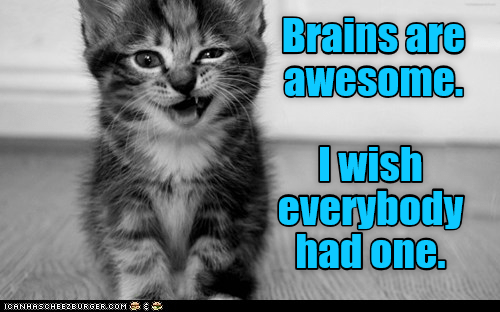 Cat - Brains are awesome. Iwish everybody had one. CANHASCHEE2EURGER cOM