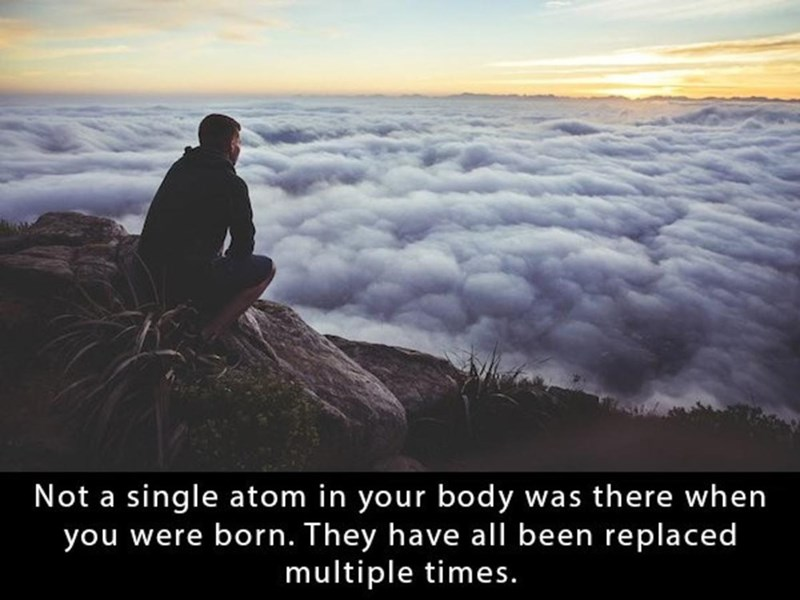 Sky - Not a single atom in your body was there when you were born. They have all been replaced multiple times.