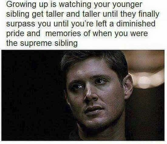 Text - Growing up is watching your younger sibling get taller and taller until they finally surpass you until you're left a diminished pride and memories of when you were the supreme sibling
